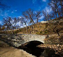 Bridge Over Water by Sharlene Rens