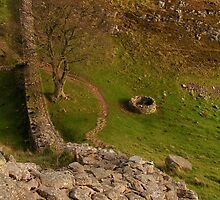 Along Hadrian's Wall - V by Kat Simmons