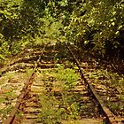 Old, Rusty Railroad Tracks iPhone 4 case by Lisa Holmgreen