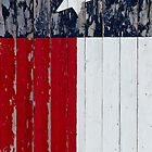 Texas Flag by Ken  Hurst