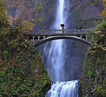Multnomah Falls, Oregon by Kathy Yates