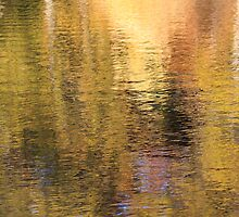 Golden Pond by Lynn Wiles