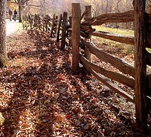 Rustic Fence  ^ by ctheworld
