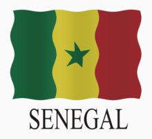 Senegal flag by stuwdamdorp