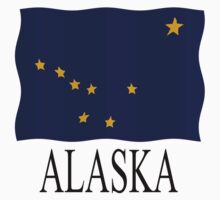 Alaskan flag by stuwdamdorp