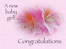Congratulations New Baby Girl - Azaleas by MotherNature