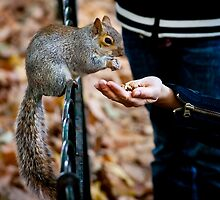 A Helping Hand by Patrick Metzdorf