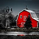 Red Barns of the Midwest by Marcia Rubin