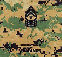 USMC E9 SgtMaj Woodlan by Sinubis