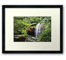 Buderim Falls Framed Print