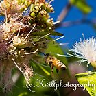 Bee by kwill