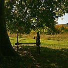 Aude automnale by Fran0723