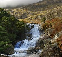 Coppermines Waterfalls....Levers Water Beck 2 by Jamie  Green
