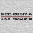 ST Registry Series - Excalibur Logo by Christopher Bunye