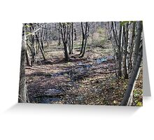 Autumn Landscape Greeting Card