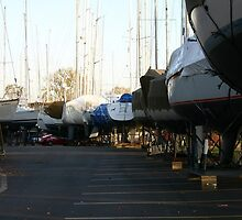 sailboats prepared for winter by wolf6249107