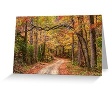 Tangled Limbs and Fallen Leaves Greeting Card
