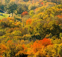 Autumn in the Litchfield Hills II ~ Connecticut, USA by Sabine Jacobs