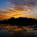 Marsh and Mansion Silhouette by keeganspera