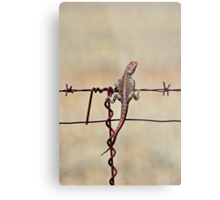 High Wire Act Metal Print