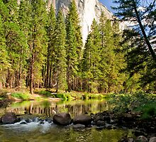 El Cap Reflections by Cat Connor