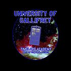 University of Gallifrey - Temporal Academy by SOIL