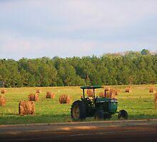 Hay In Field by Ginger  Barritt
