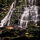 Nelson Falls by Shane Viper