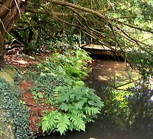 Secret Pool in the Grounds of Chartwell, Kent by Janne1942