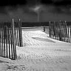 Storm on the Horizon by Anthony M. Davis
