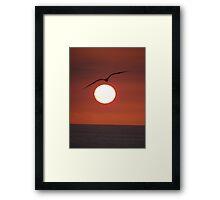Ocean, sun, sky and bird III Framed Print