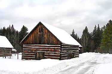 Pioneer Barn - Winter by Lynda  McDonald