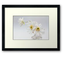 White Anemones in a Glass Bottle Framed Print