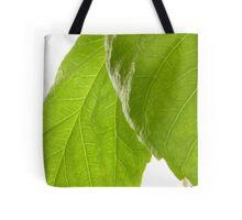 Hibiscus Leaves Tote Bag