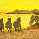 Sunset Run by Judy Newcomb