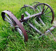 Old Farm Equipment in Tall Grass by David Galson