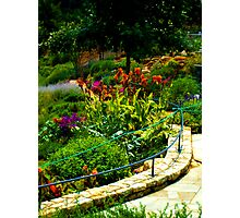 Floral Walk-way in Park, Greenville, SC Photographic Print