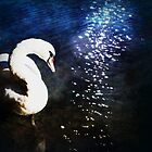 Swan Song by Jennifer Rhoades