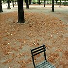 Small Seat in Paris by kendall1