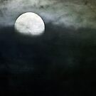 Beaver Moon by Mary Ann Reilly