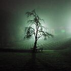 Tree of life by Rasevic