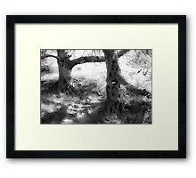 Sylvan Duet Pale BW Framed Print