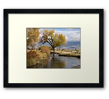 Last Of The Gold   Featured in Eleven different groups. Framed Print