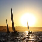 Sailing in San Francisco Bay by Igor Pozdnyakov