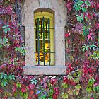 Stone Window by John Butler