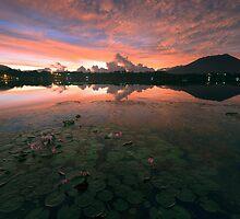 Sampaloc Lake by Rodel Joselito B.  Manabat