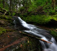 Garden State Falls by SpeezPhotos