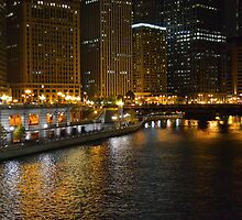 Chicago After Dark by Brian Gaynor