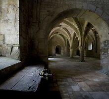 Fontenay Abbey by lawrencew