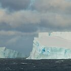 Icebergs galore, Antarctic Sound by Coreena Vieth